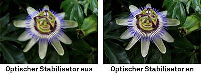 Optischer Stabilisator